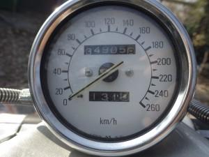 IMGP1230