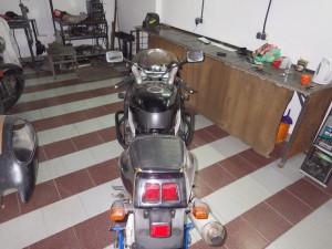 IMGP3295